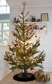 32 best teddy tree images on teddy