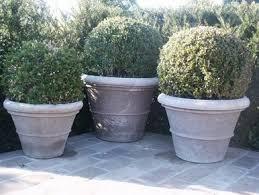 compagnie des jardins outdoor plant pots