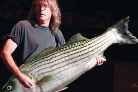 Bass Player Meme - 19 problems that only bass players will understand