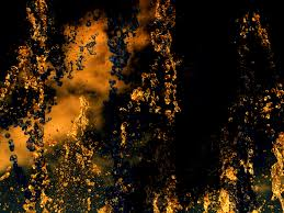 free images tree water liquid light sunset night sunlight