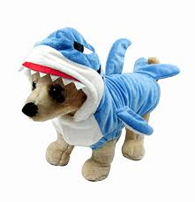 Halloween Costumes Dogs Cute Halloween Costumes Small Dogs Love Chi