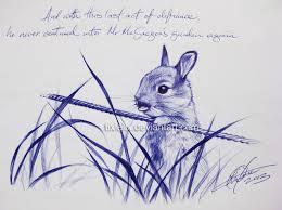 peter rabbit tixielix deviantart