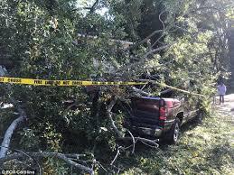 dies when tree limb crashes into south carolina home daily