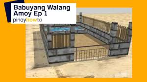 how to raise pigs baboyang walang amoy or odorless pigpen episode