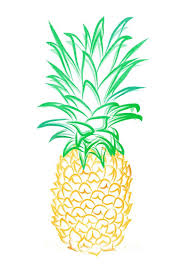 15 best botanical paintings of pineapples images on pinterest