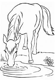 coloring sheets of a horse horse coloring page mare and her sleeping foal horse stuffde