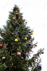 outdoor tree decoration for uses stock photo