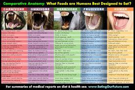 humans are frugivores u2013 we u0027re designed to eat mostly fruit