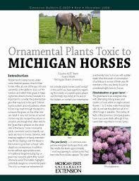 ornamental plants toxic to michigan horses e3059 msu extension