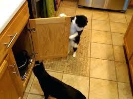 baby locks for cabinet doors cabinet door child locks konect me