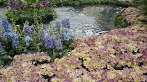scenic flower garden in las vegas circa 2013 stock footage video