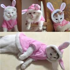 easter bunny costume pet cat clothes easter bunny costume cat store