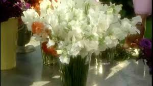 How To Make Floral Arrangements Video How To Make Gladiolus Flower Arrangements Martha Stewart