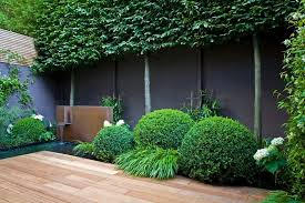 garden feature wall landscape asian with greenery bamboo picket