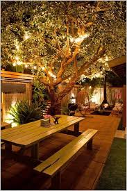 Outdoor Up Lighting For Trees Outdoor Up Lighting For Trees Charming Light Ideas For An