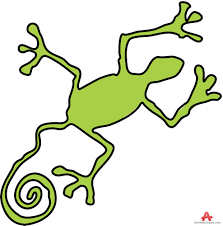 green gecko lizard symbol free clipart design download