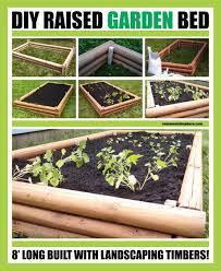 Cedar Landscape Timbers by Garden Design Garden Design With Infinite Cedar Raised Garden Bed