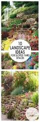 Landscaping Ideas For Sloped Backyard 10 Landscape Ideas For Sloped Yard Spaces Bees And Roses