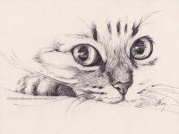 162 best pencil drawings images on pinterest pencil drawings