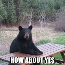 How About Yes Meme - how about yes patient bear meme generator