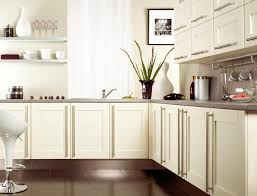 What Color Kitchen Cabinets Go With White Appliances Kitchen Kitchen Appliances Wall Kitchen Cabinets White Kitchen