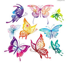 colorful butterfly vector material 58731 jpg 800 769 zentangle