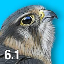 ibird uk u0026 ireland guide to birds ibird