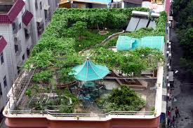 Roof Gardens Ideas Atmosphere In Rooftop Gardens Home Decorations Insight