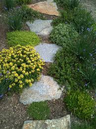 walkways and paths in the garden