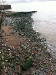 the hudson u0027s supermoon spring tides and freshet seaandskyny