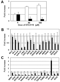 effect of the stat3 inhibitor stx 0119 on the proliferation of