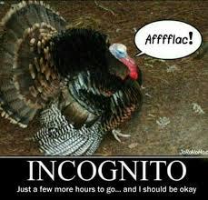 Thanksgiving Turkey Meme - best 27 thanksgiving turkey meme wallpaper site wallpaper site