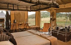 british safari themed room google search safari theme trailer