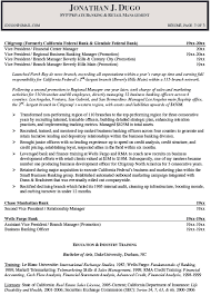 Business Banker Resume Essay On The Internet And Its Advantages And Disadvantages Free