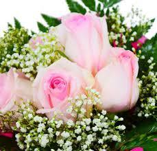 Order Flowers Online Wants To Order Flowers Online Qatar Best Deals Dot Com Offers You