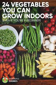 quick growing vegetables for your fall garden best winter