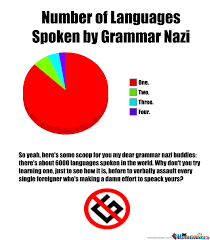 Grammer Nazi Meme - no grammar nazi by symanovitch meme center