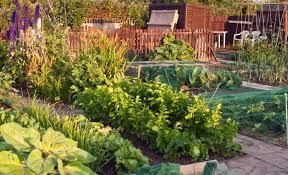 how to install garden irrigation