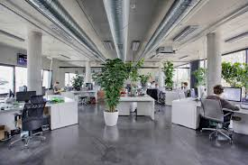 plants give our industrial office a cozy feel office pinterest