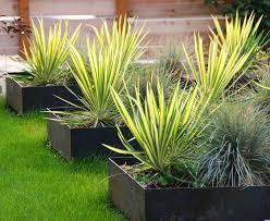 planters black window planter boxes long box with trellis square