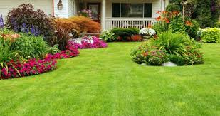 exterior elegant front yard landscaping ideas showing green