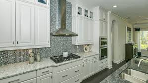 Home Options Design Jacksonville Fl by Danbury Floor Plan In Terra Costa Calatlantic Homes