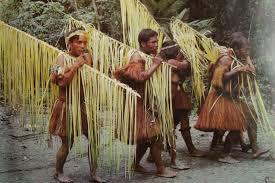 fotos de chavos vergones desnudos apexwallpapers com tras la senda de los ancestros el hombre en las selvas sudamericanas