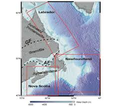 tectonic evolution of the east coast of canada cseg recorder online