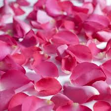 fresh petals fresh flowers hot pink petals approximately 3000
