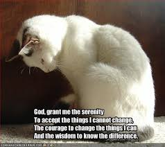 Lord Help Me Meme - god grant me the serenity to accept the things i cannot change