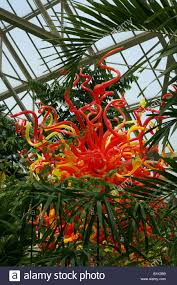 family garden columbus oh blown glass art by dale chihuly among green plants franklin stock