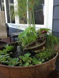 how to plant a water container garden water containers plants