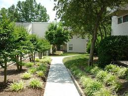 knoxville tn apartments for rent realtor com