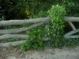 garde corps jardin rusticages faux bois vraies oeuvres d u0027art